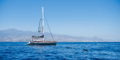 Freebird One es el mayor catamarán en Tenerife