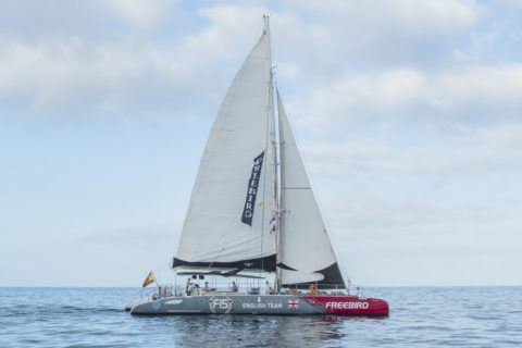 Catamaran cruis in Tenerife - Freebird F15