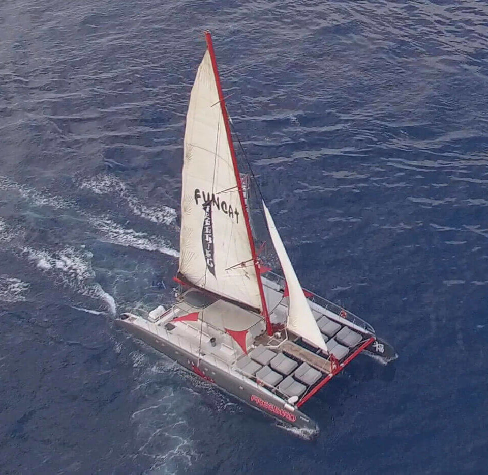 Freebird Catamarans F13