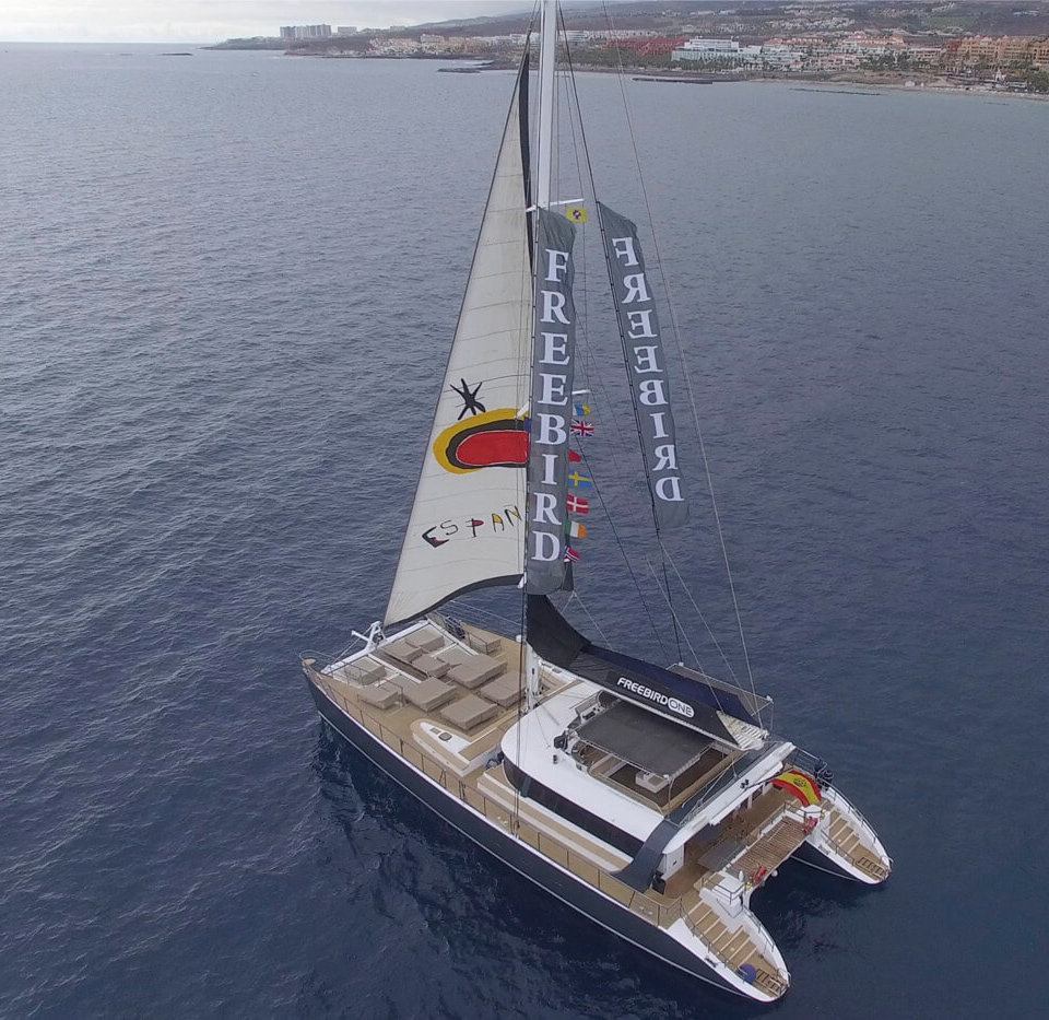 Tenerife 3-Hour catamaran cruise