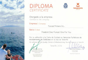 Certificate of Freebird catamaran - Tenerife