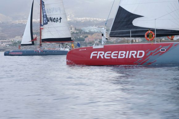 Freebird float cruises in Tenerife