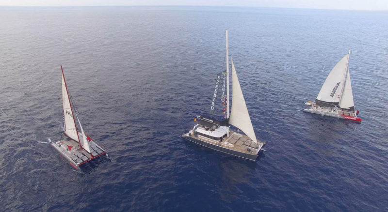 Freebird Catamarans in Tenerife
