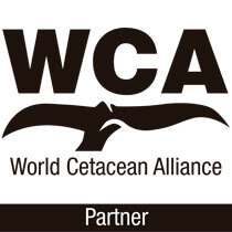 World Cetacean Alliance Partner