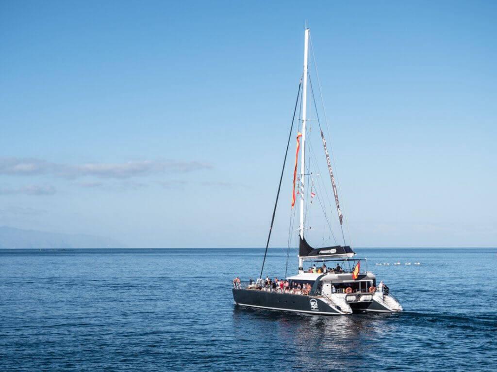 Freebird One on a private tour in catamaran
