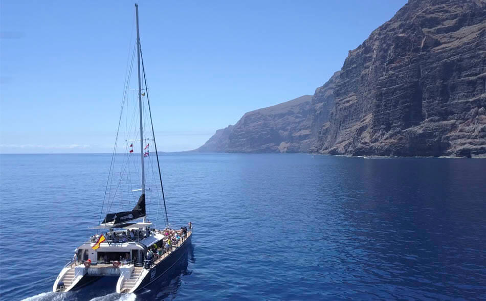 Whale & Dolphin watching excursion in Masca and Los Gigantes