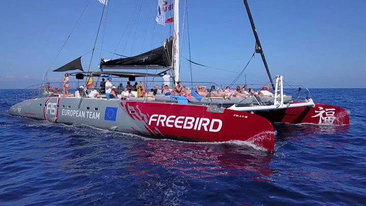 Freebird Catamaran Whale Watching Tours