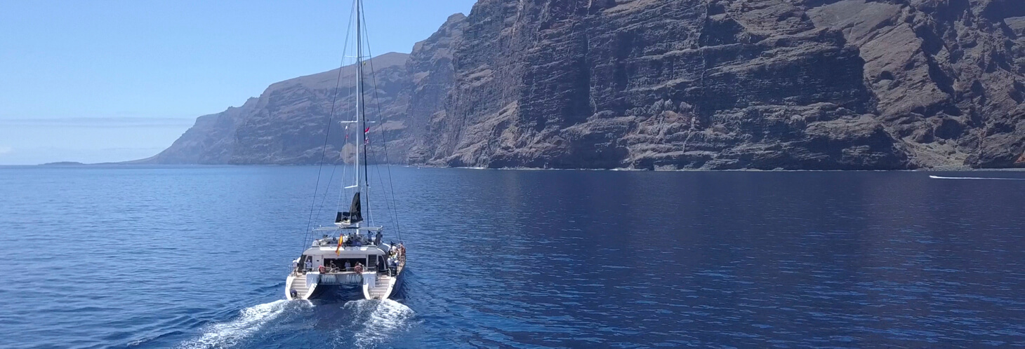 Whale watching tour in Los Gigantes