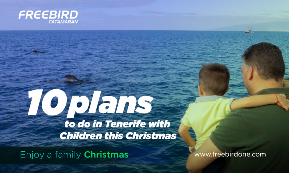 10 plans to do in Tenerife with Children this Christmas