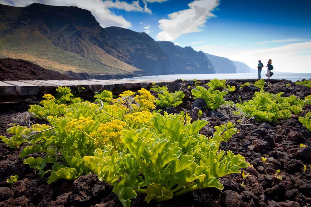 Teno, Tenerife
